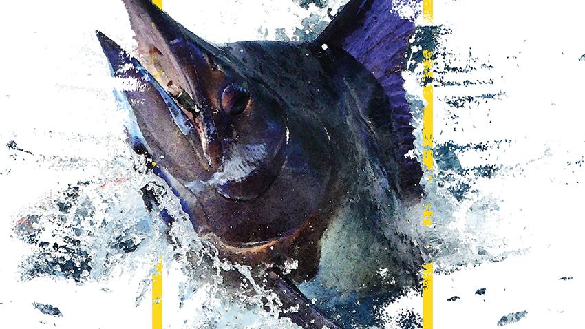 El Concurso de Pesca Pasito Blanco 2020 ya tiene cartel