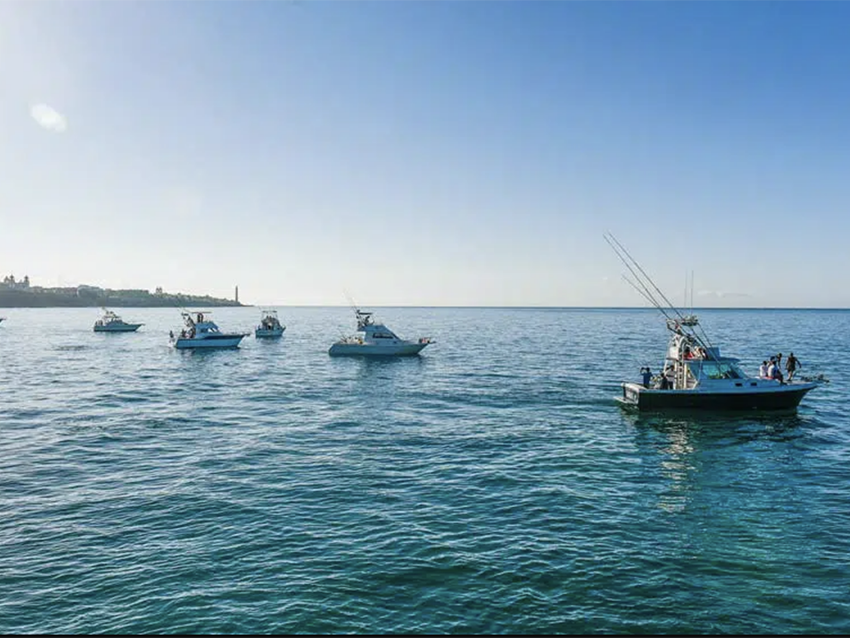La revista 'Jara y Sedal' se hace eco del I Open Internacional Pesca de Altura Gran Canaria