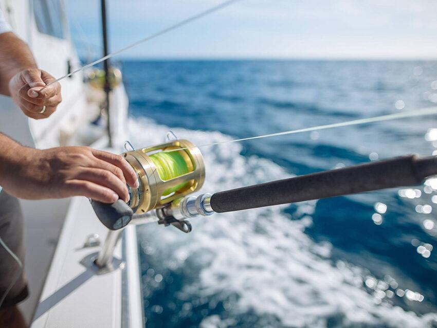 La revista 'Skipper' anuncia que «la búsqueda del Gran Marlin empieza en Gran Canaria»